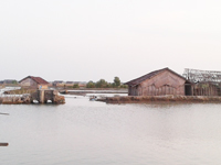 Tanggul SWD I Di Kedungmutih  Jebol Akibat Banjir Belum Ada Perbaikan