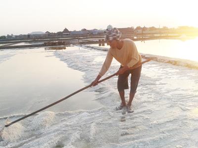 Mbah Mafwan Generasi Pertama , Pembuat Garam Dari Desa Kedungmutih
