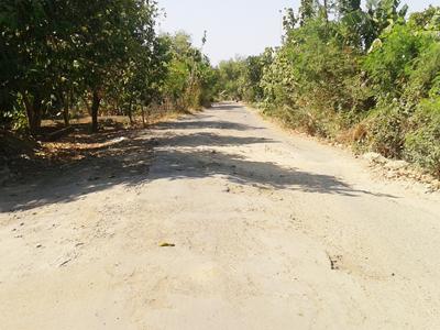 Woow !!! Jalan Ngemplik  Desa Jungpasir Demak Masih Rusak