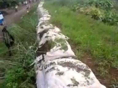 Warga Harus Waspada Tanggul Desa Karangrandu , Rawan di Semua Titik