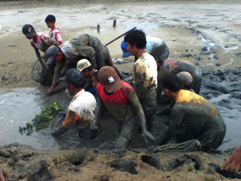 Nggolong Dan Jrupo ,Tradisi Memanen Ikan Di Pesisir Demak Dan Jepara