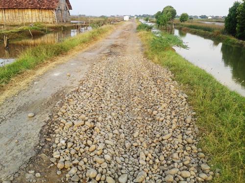 Jalan Angkutan Garam Di Desa Kalianyar Jepara Rusak Parah