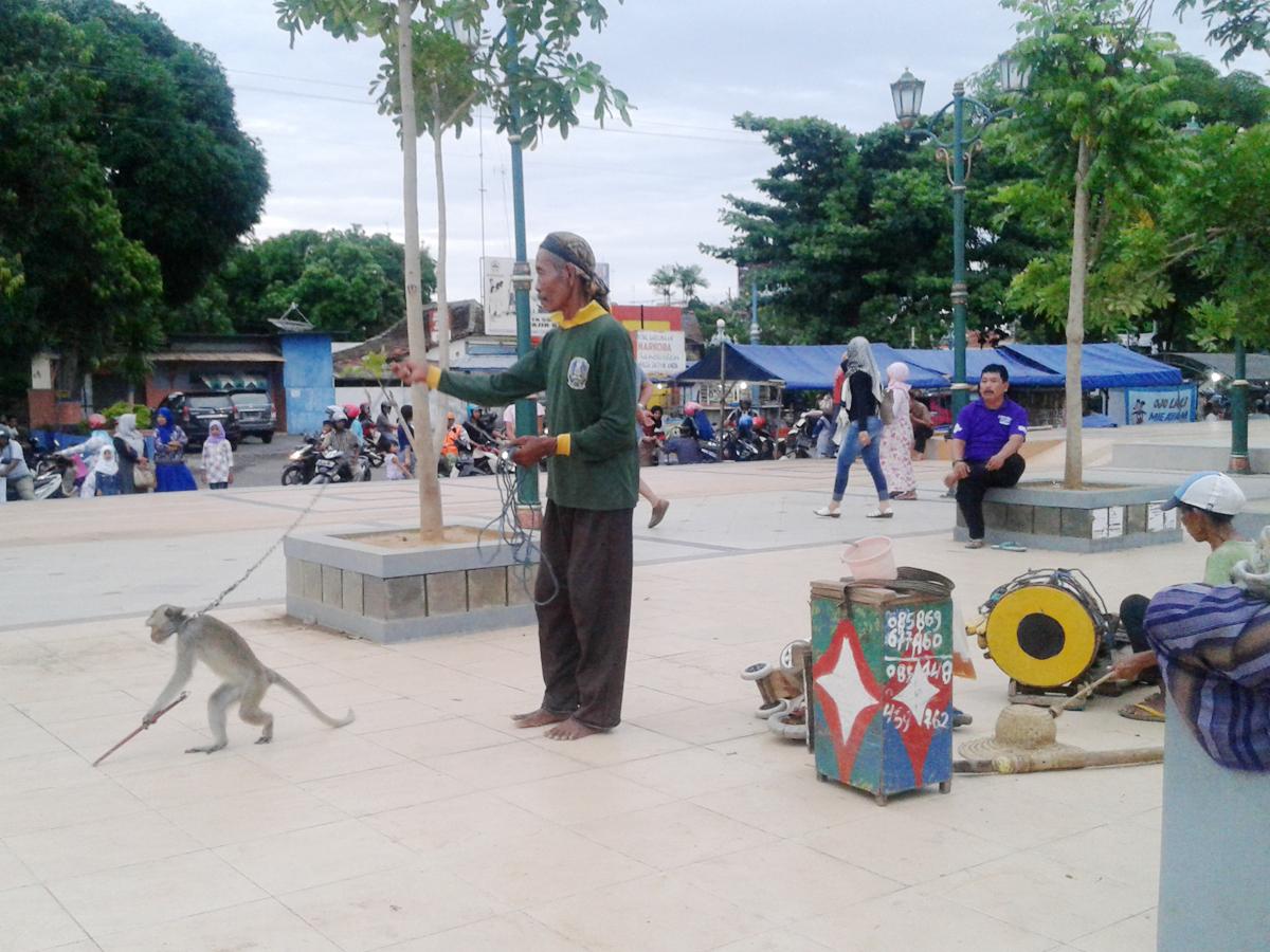 Mbah Jamin Berkeliling sebagai Dalang Topeng Monyet