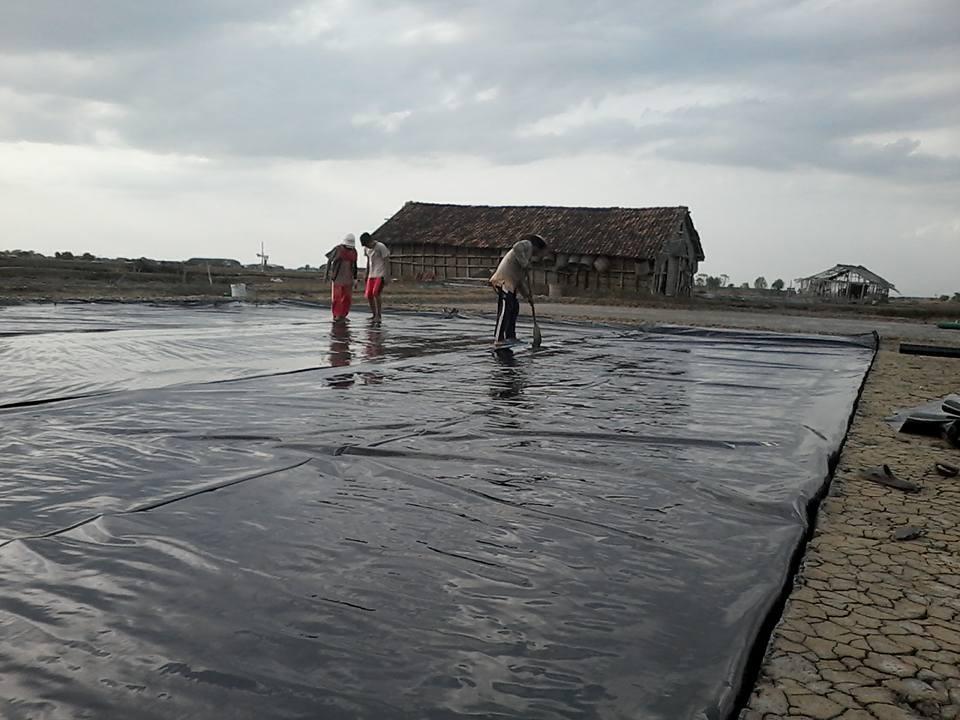 Geo Membran Terbukti Ringankan Kerja Petambak Membuat Garam