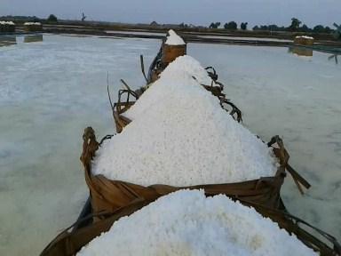 Resi Gudang Solusi Stabilkan Harga Garam Di Jepara