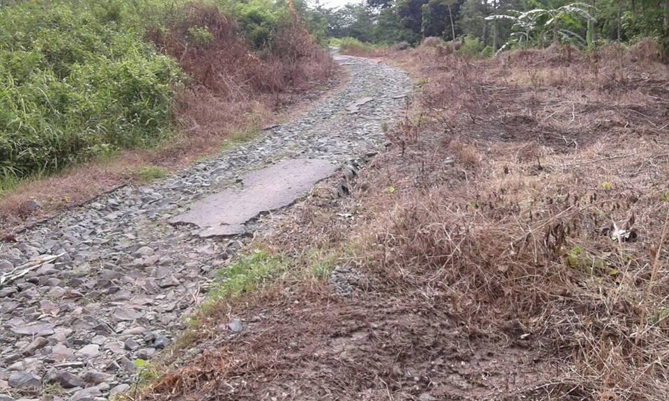 Jalan Desa Sumberrejo Donorojo , Puluhan Tahun Rusak Parah Belum Ada Perbaikan