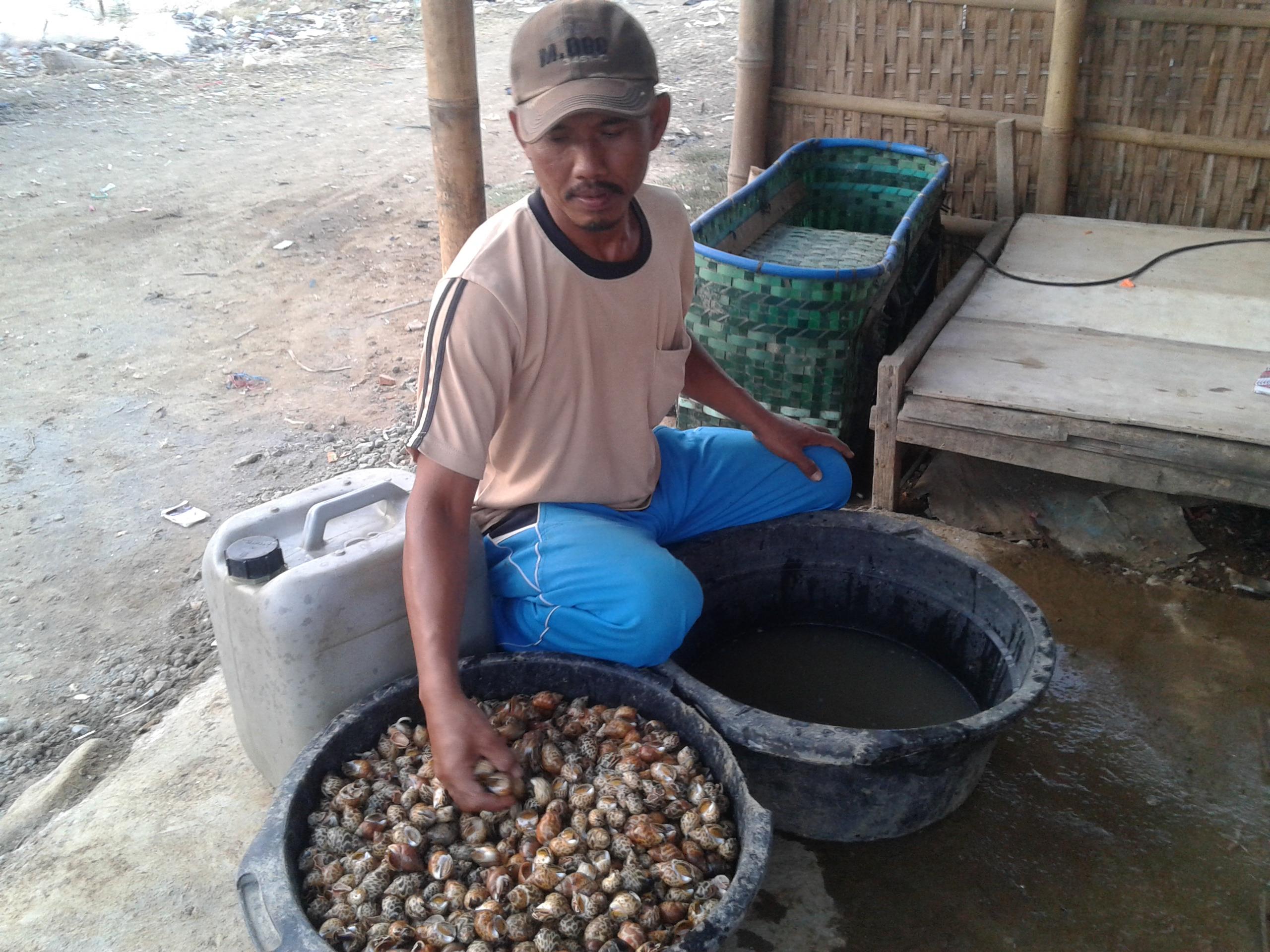 Bang Muin Pengepul Hasil Laut Dari Desa Kedungmutih Demak