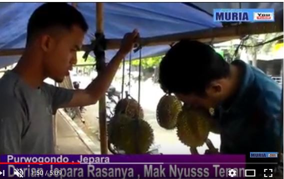 Durian Jepara Kini Mulai Langka , Tahun Baru Diperkirakan Booming Lagi