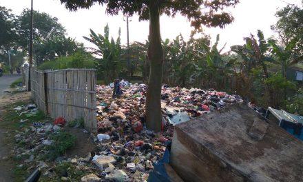 Tempat Pembuangan Sampah Bungo Demak  di Pinggir Jalan Raya , Perlu Penataan