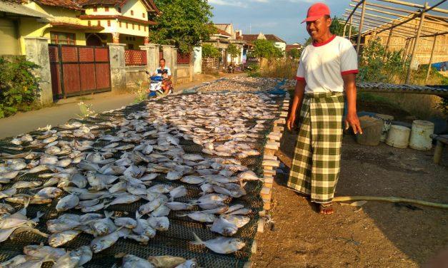 """Pak Harto Petambak Garam Demak , """"Nyambi"""" Usaha Pengeringan Ikan"""