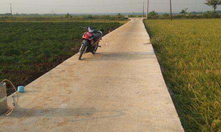 Jalan Tembus Barat Desa Gerdu Pecangaan, Menguntungkan Warga Untuk Mobilitas
