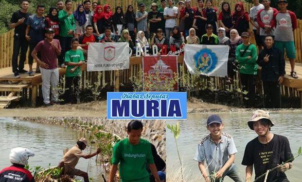 Peringati Sumpah Pemuda , Komunitas Pemuda Tanam 650 Bibit Di Bedono Sayung