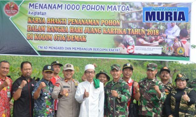 WIH !!! 1000 POHON MATOA  DITANAM DI DESA   DI DESA JRAGUNG DEMAK