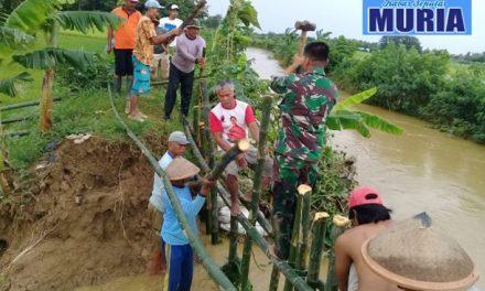 Babinsa dan Warga Gotong Royong Perbaiki Tanggul Desa Bogotanjung Pati Yang Jebol