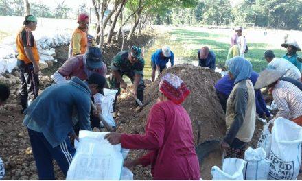 Karya Bhakti Tinggikan Tanggul Sungai Manging Pati  Antisipasi Banjir
