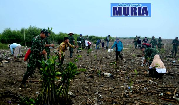 KODIM  0718 Pati  Gandeng  Komunitas Pecinta Alam Hijaukan Pantai Dengan Mangrove