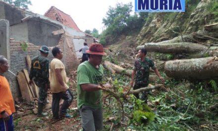 Angin Kencang Di Pati , Robohkan Pohon Tua Timpa 2 Rumah Warga Desa Pakem