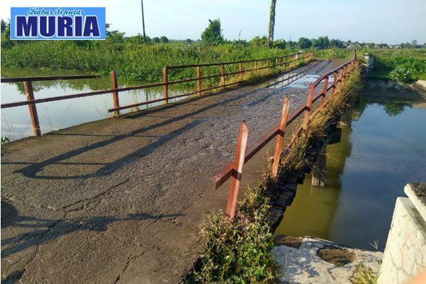 Jembatan Tedunan – Kendalasem Demak , Saatnya Untuk diperbaiki