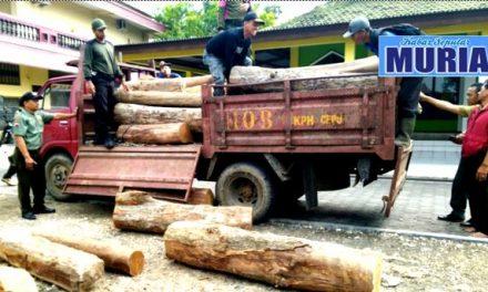 Polres Blora dan Perhutani Amankan 45 Batang Kayu Jati Yang di Duga Hasil Curian