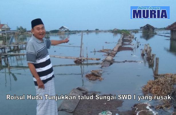 Talud Sungai SWD I Kedungmutih Demak Jebol , Petambak Kesulitan Produksi Garam