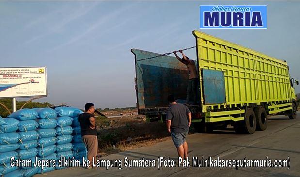 Harga Garam Jepara Murah Pedagang  Setiap Hari Kirim Garam Ke Luar Jawa