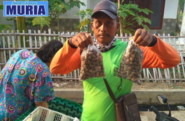 Pak Kamijan Warga Desa Bungo , Setiap Hari Jual Kerang Keliling
