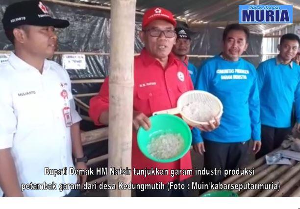 Bupati Demak HM Natsir  Gembira , Petambak Garam Demak Produksi Garam Industri di Musim Penghujan