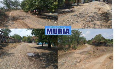 Jalan Raya Desa Rejosari Demak Masih Ada Yang Belum Dibetonisasi Hujan Licin dan Berkubang Air