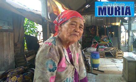 Mbah Sutiah Wiraswasta Sejati , 40 Tahun Berjualan di Pasar Desa Babalan Demak
