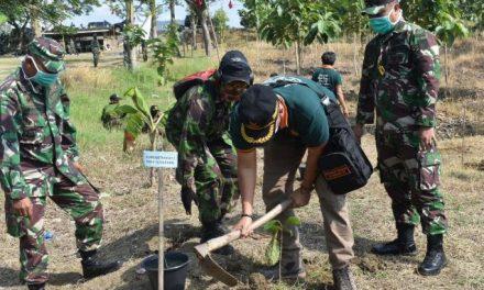 Agar Tetap Hijau , Hutan Jragung Terus Tanami Pohon