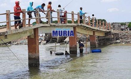 Jembatan Kedungmutih Demak . Tempat Asyik Untuk Memancing