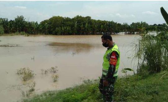 Babinsa Cek Tanggul Sungai Waspada Bencana Banjir