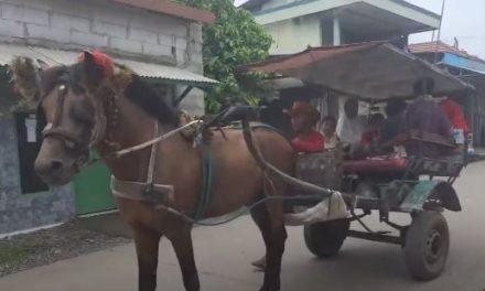 Bang Momok Kais Rejeki Dengan Ajak Anak-Anak Keliling Kampung Naik Dokar