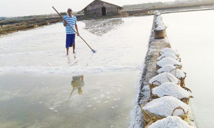 Pemerintah Buka Keran Impor Garam 3 juta Ton , Ini Alasannya