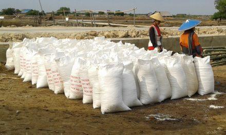 Garam Impor Untuk Pasok Industri Manufaktur , Produktifitas dan Kualitas Garam Lokal Perlu Ditingkatkan