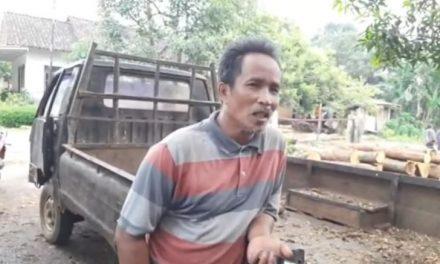 Pak Prasudi Jualan Kayu Gelondong , Covid 19  Omzet Turun Sedikit