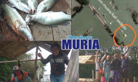Ini Tempat Memancing Ikan Yang Nyaman dan Mantap Hasilnya di Wedung Demak