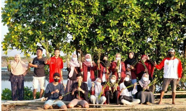 Mahasiswa  KKN IAIN Kudus Belajar Tanam Mangrove di Reduksi Kedungmutih
